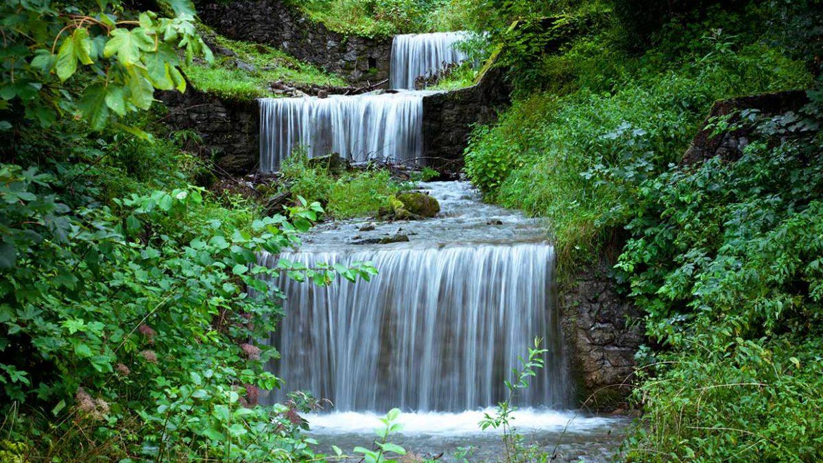 Wellwasser - Wasser und Natur