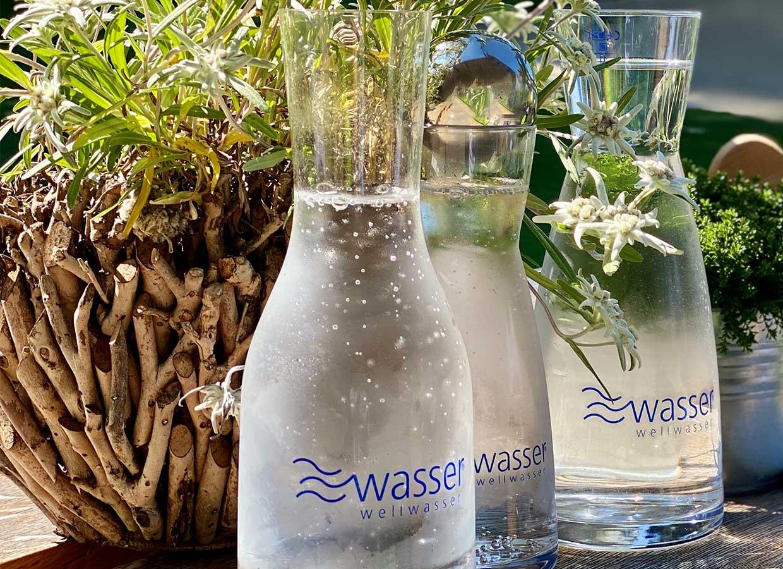 Wellwasser Karaffen perlend und still